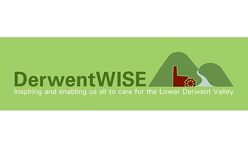 Derwentwise logo